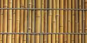 PVC Sichtschutz Bambus