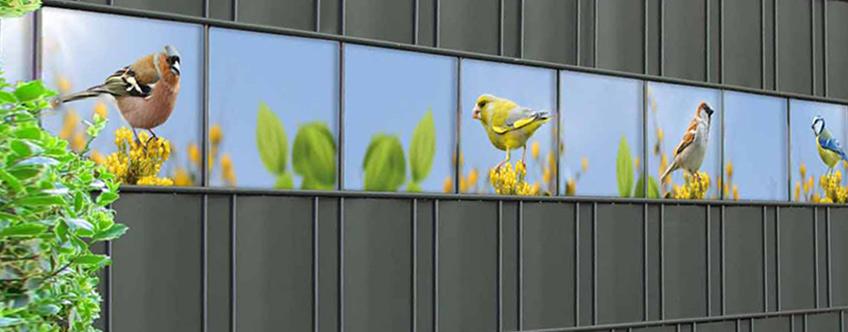 M-tec Kreativstreifen Bird Life